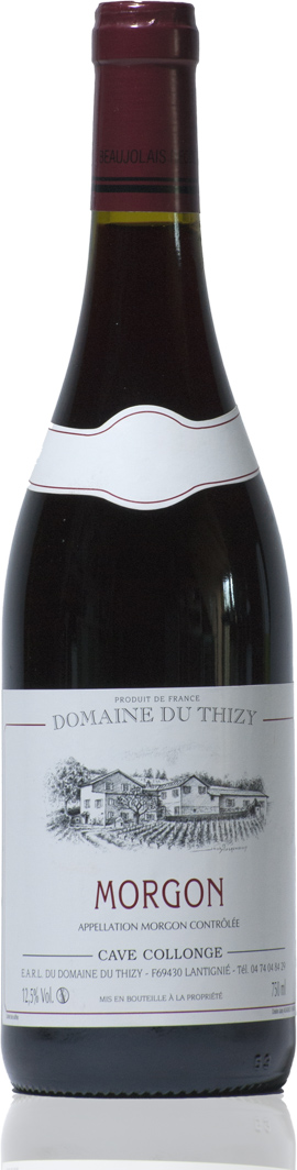 Morgon, Domaine du Thizy